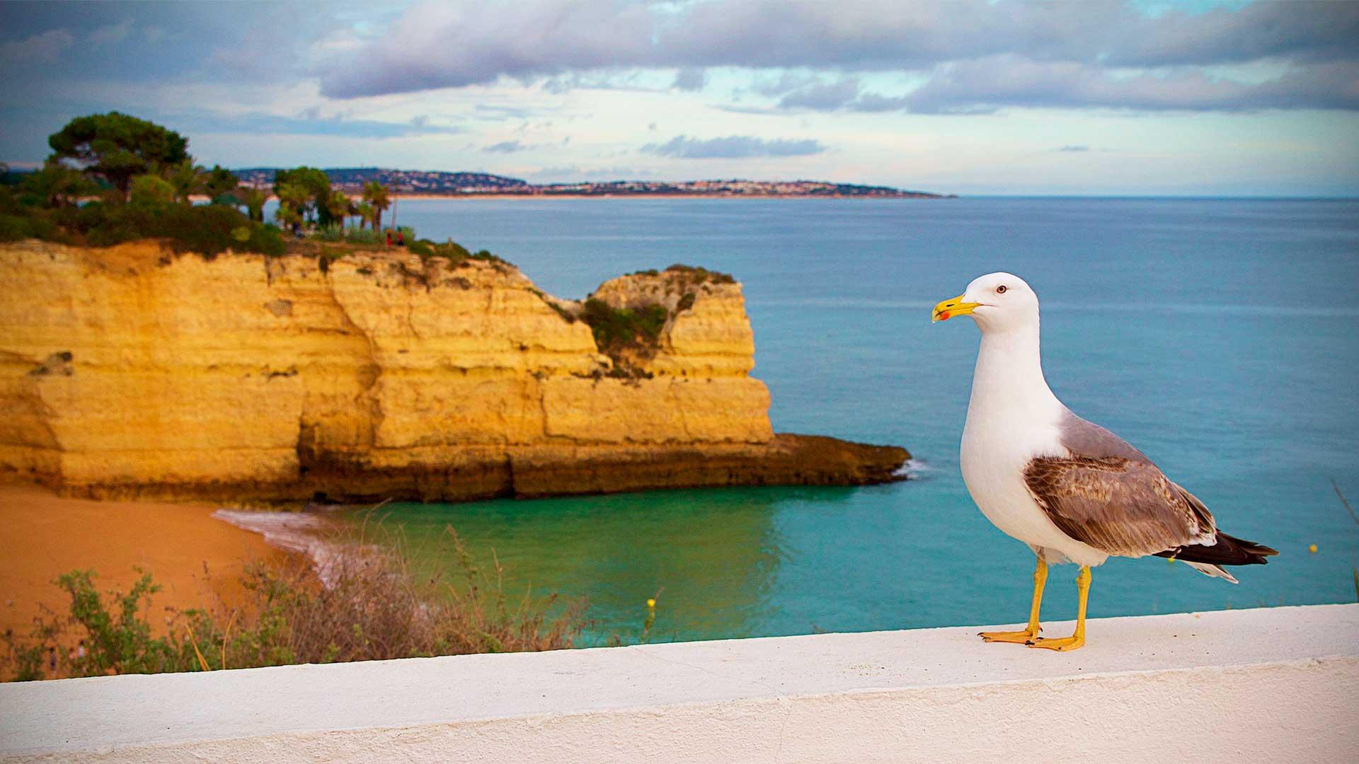 Turismo em Portugal: um caso de crescimento sustentado