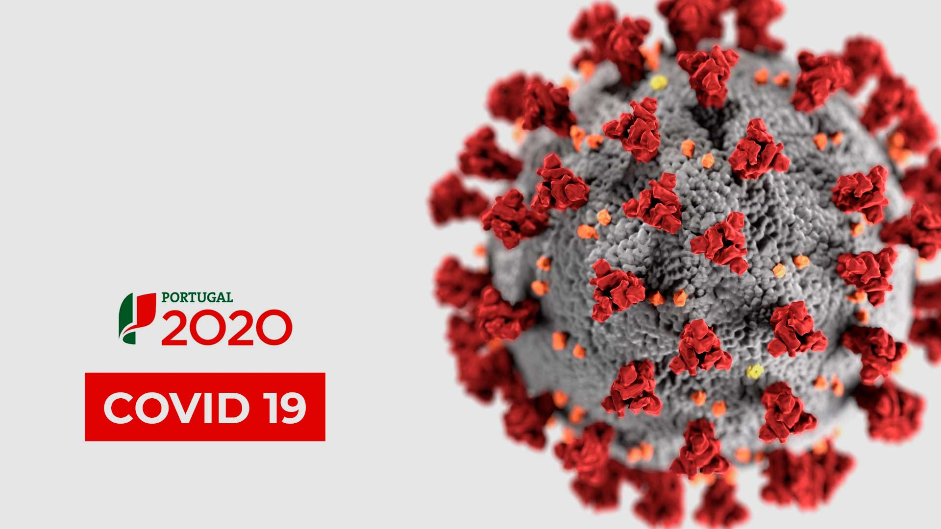 Portugal 2020 | Apoios COVID-19